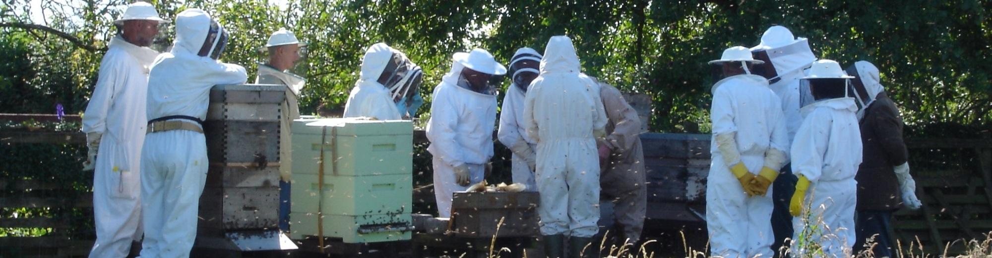 Derbyshire Beekeepers